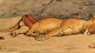 leonessa Museo Diocesano restauro