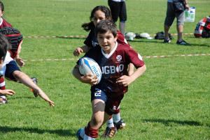 mini-rugby