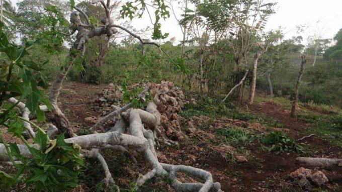 Uragano Haiti 20166