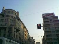 foto 501662