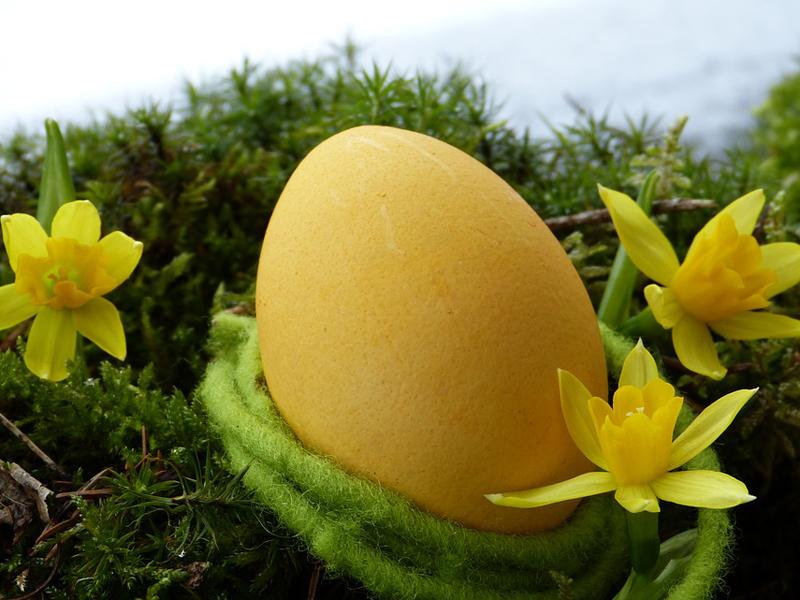 easter-egg-3165488_960_720