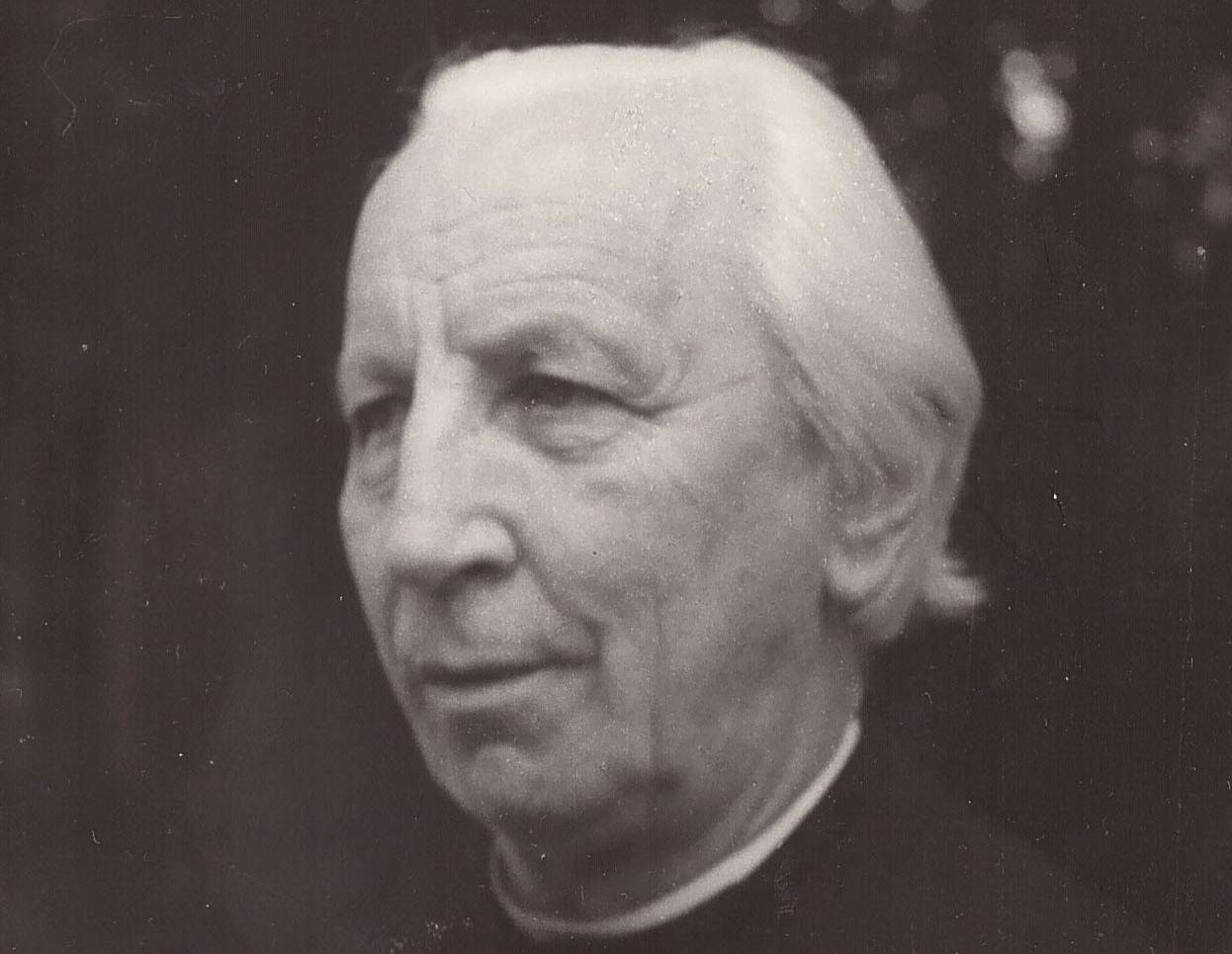 Padre Enrico Mauri