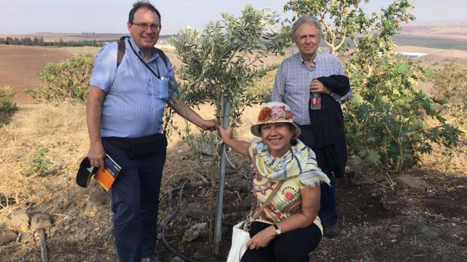 Viaggio a Gerusalemme sulle orme di Martini