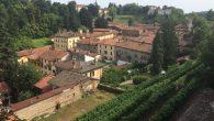 Foto vino Il Collegiata_09a