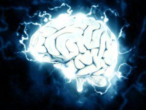 cervello-pixabay-300x227
