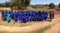 Celim Zambia