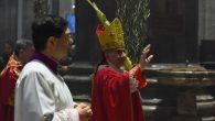 pontificale palme 2019 (D)