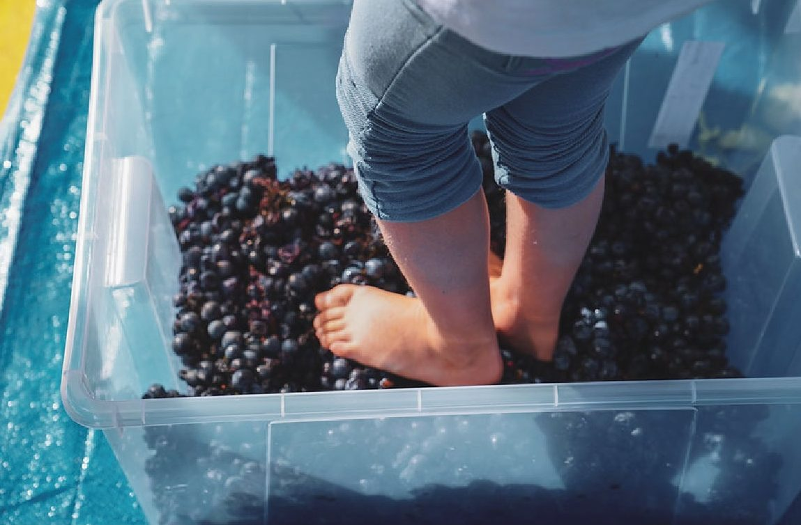 Foto festa dell'uva